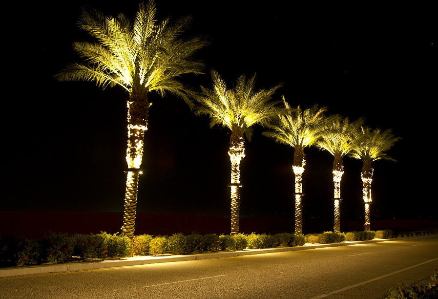 Stella Led Palm Tree Light Bradley Lighting